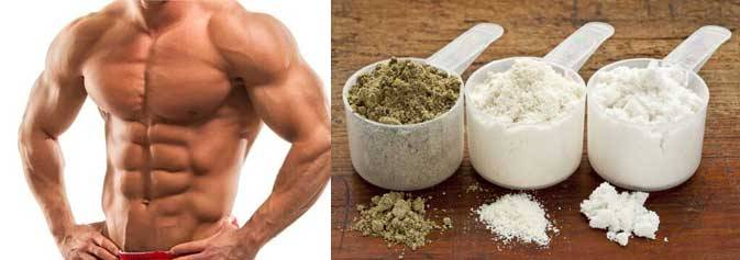 Питание на курсе стероидов, правила и основы l muscle-pharma.